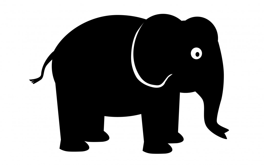 The Elephant and the Business Model